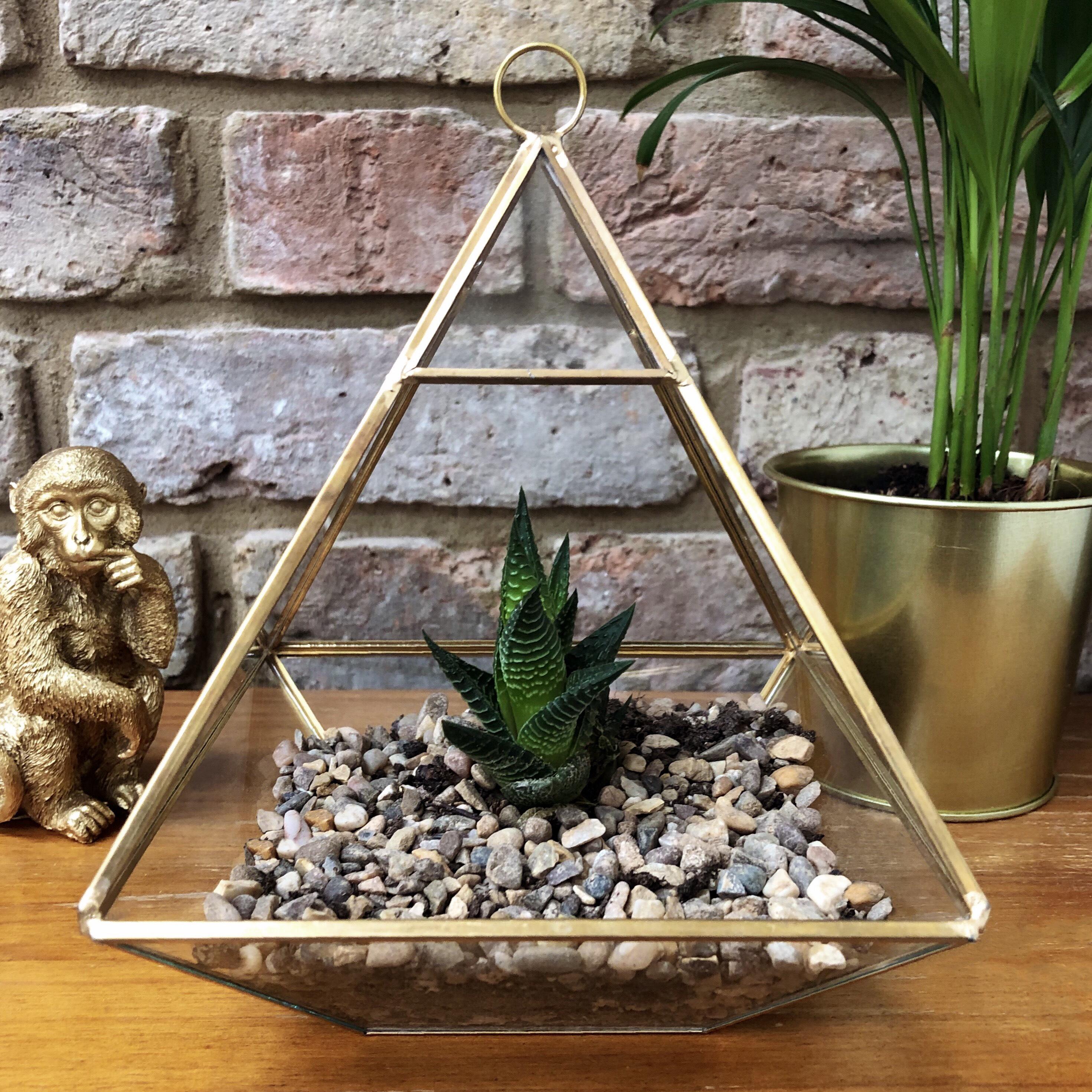 Large Brass Pyramid Terrarium A Little Arty